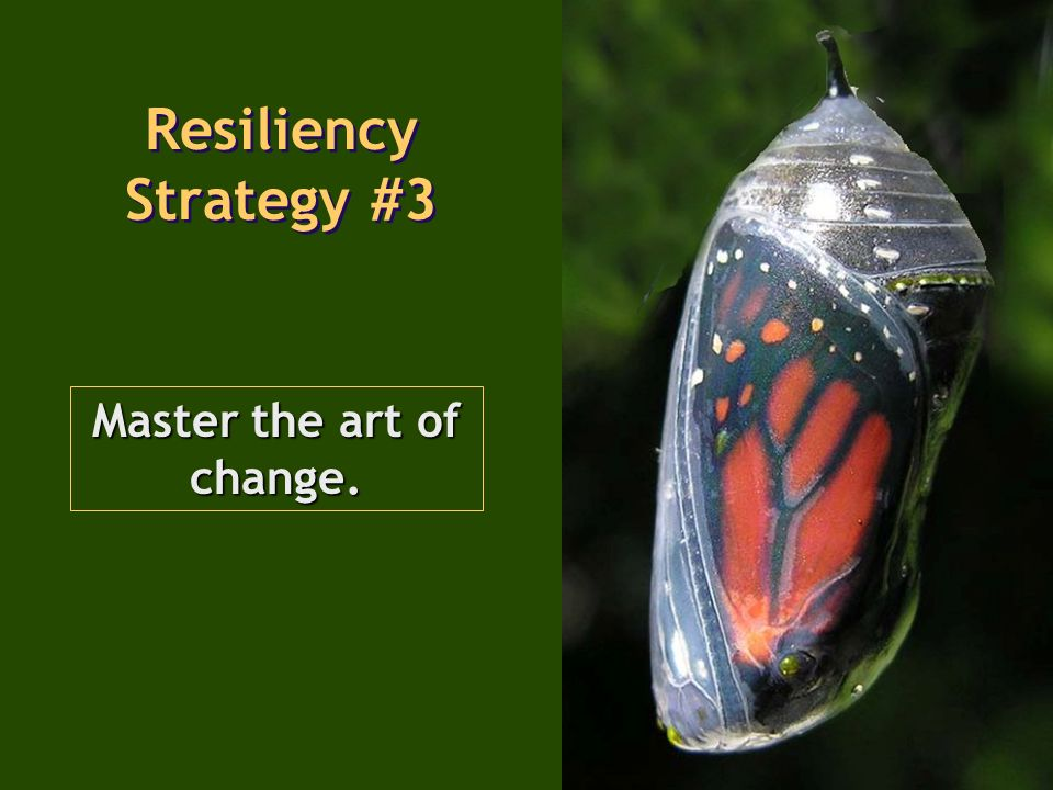 Master the art of change. Resiliency Strategy #3