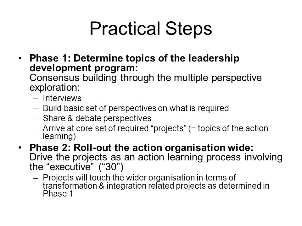 Practical Steps Phase 1: Determine topics of the leadership development program: Consensus building through the multiple perspective exploration: –Interviews –Build basic set of perspectives on what is required –Share & debate perspectives –Arrive at core set of required projects (= topics of the action learning) Phase 2: Roll-out the action organisation wide: Drive the projects as an action learning process involving the executive (30) –Projects will touch the wider organisation in terms of transformation & integration related projects as determined in Phase 1