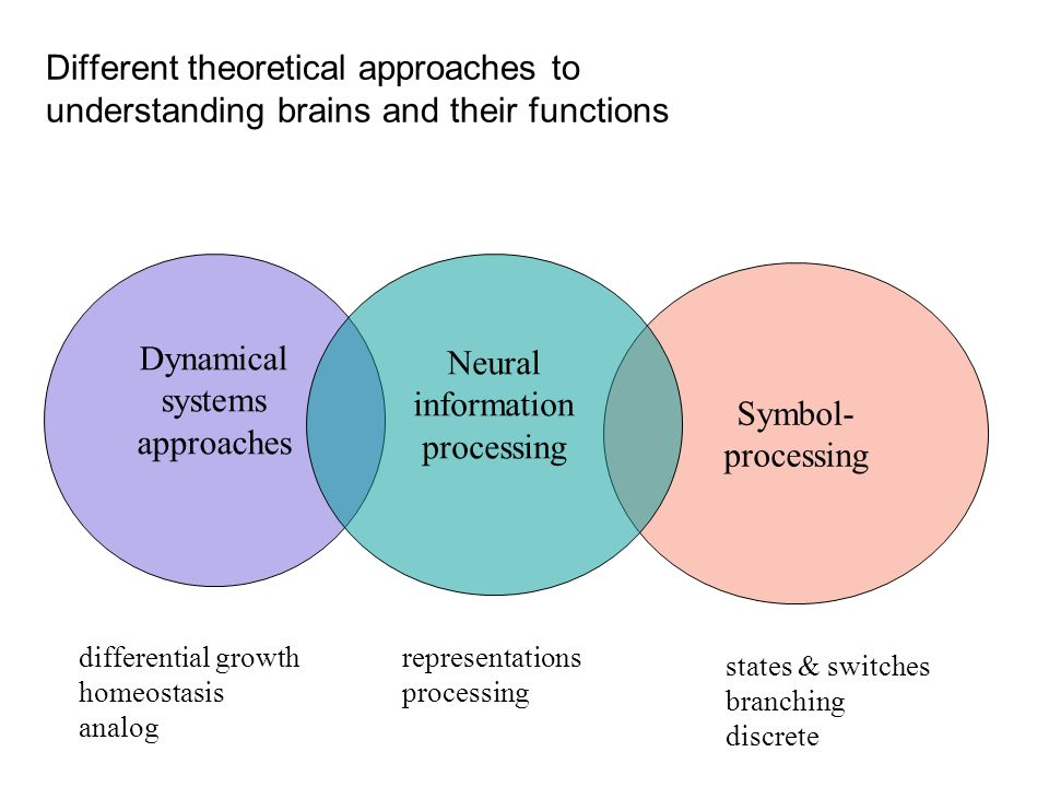 Different theoretical approaches to understanding brains and their functions Dynamical systems approaches Symbol- processing Neural information proces