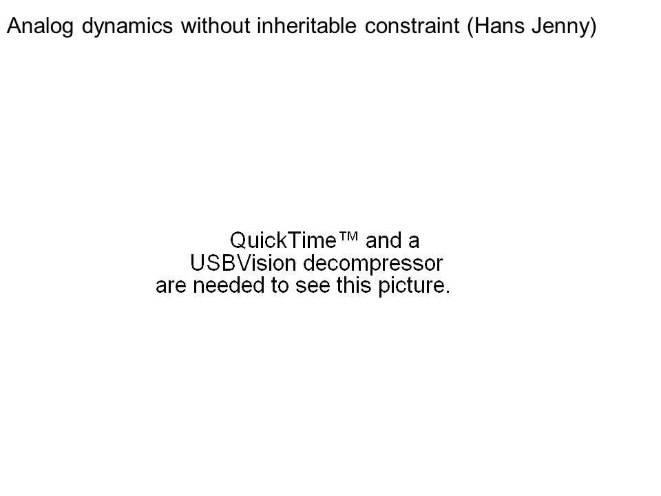 Analog dynamics without inheritable constraint (Hans Jenny)