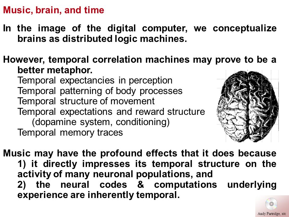 In the image of the digital computer, we conceptualize brains as distributed logic machines. However, temporal correlation machines may prove to be a