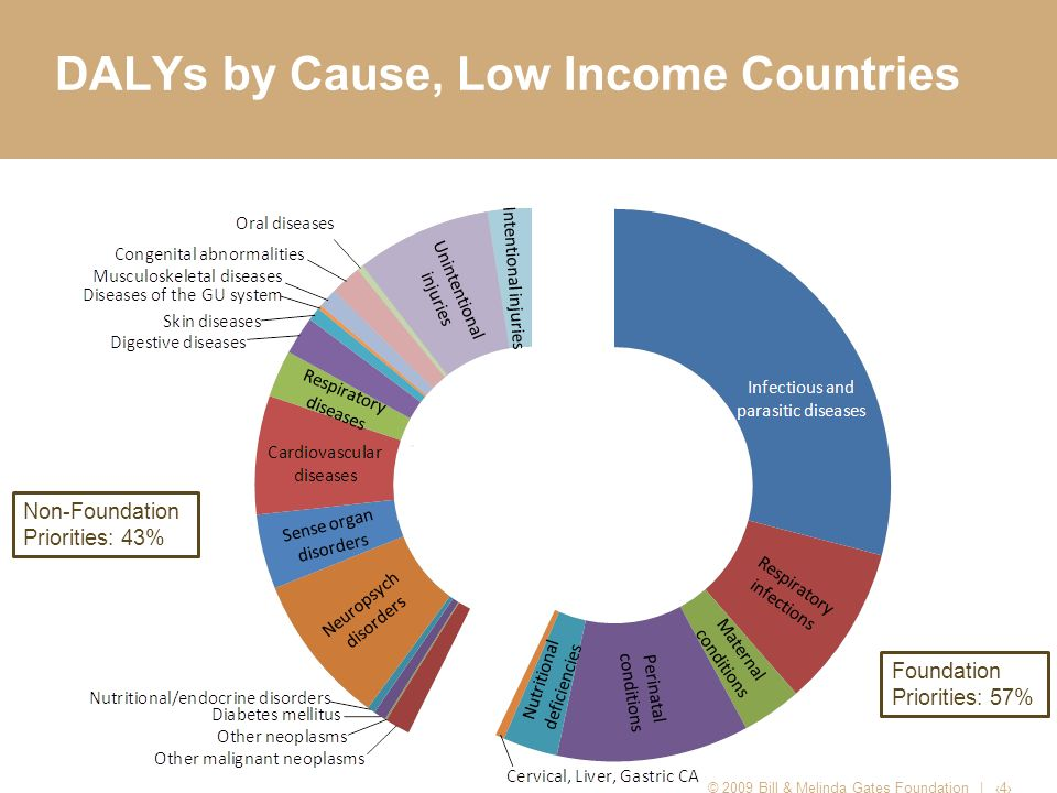 DALYs by Cause, Low Income Countries © 2009 Bill & Melinda Gates Foundation | 4 Non-Foundation Priorities: 43% Foundation Priorities: 57%