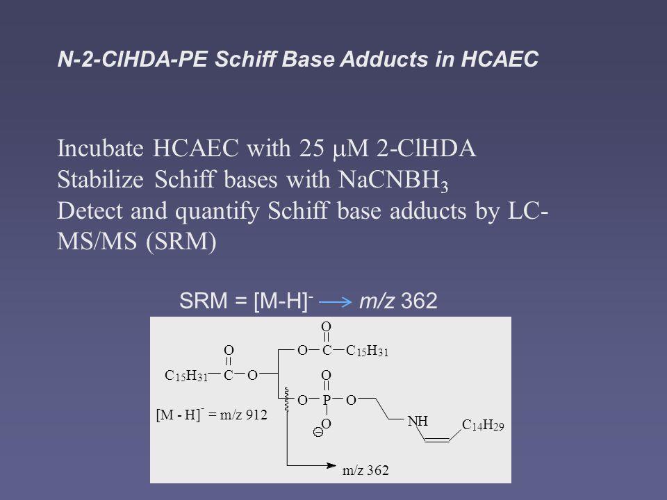 N-2-ClHDA-PE Schiff Base Adducts in HCAEC Incubate HCAEC with 25 M 2-ClHDA Stabilize Schiff bases with NaCNBH 3 Detect and quantify Schiff base adducts by LC- MS/MS (SRM) OC O C 15 H 31 OC O C 15 H 31 OP O O O NH C 14 H 29 m/z 362 [M - H] - = m/z 912 SRM = [M-H] - m/z 362
