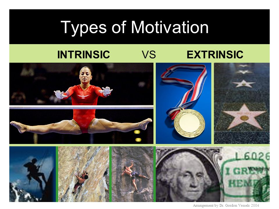 Intrinsic & Extrinsic Motivators Intrinsic motivator: » » Some behaviors have directly rewarding results that satisfy drives (e.g.