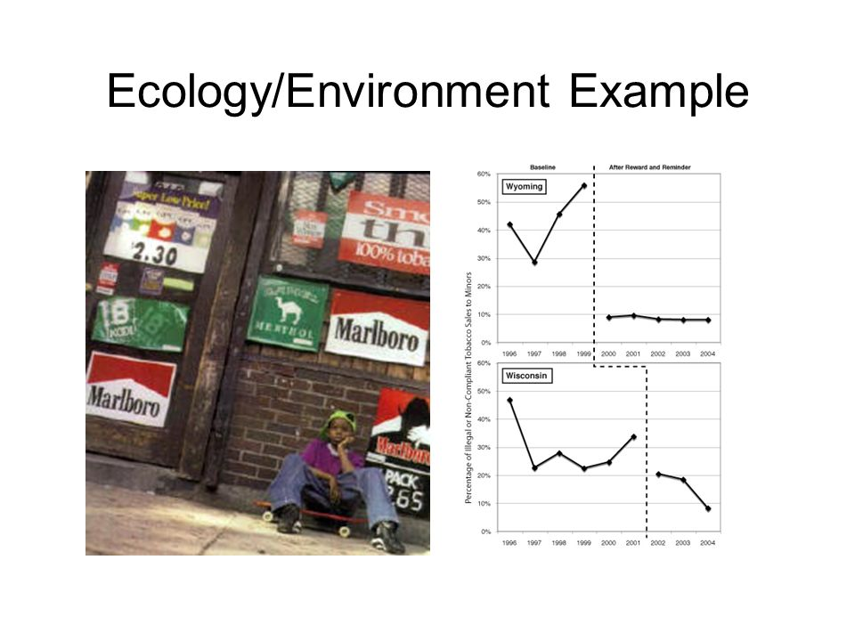 Ecology/Environment Example