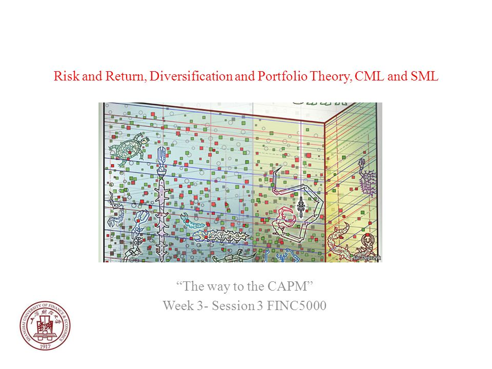 Risk and Return, Diversification and Portfolio Theory, CML and SML The way to the CAPM Week 3- Session 3 FINC5000