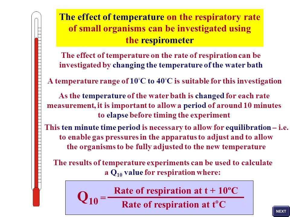 The effect of temperature on the respiratory rate of small organisms can be investigated using the respirometer The effect of temperature on the rate