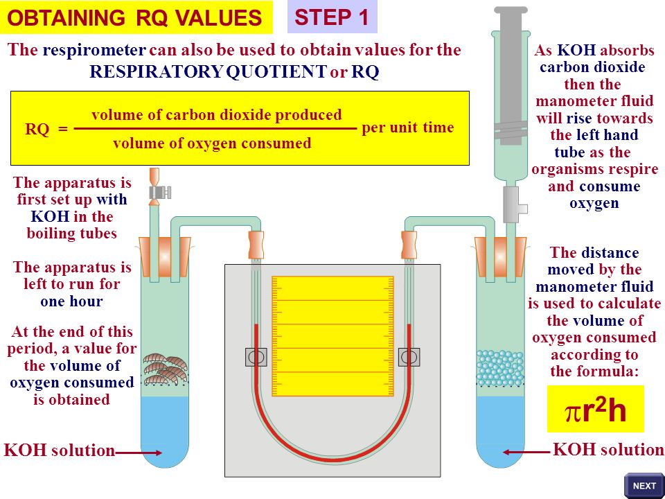 OBTAINING RQ VALUES The respirometer can also be used to obtain values for the RESPIRATORY QUOTIENT or RQ RQ = volume of carbon dioxide produced volum