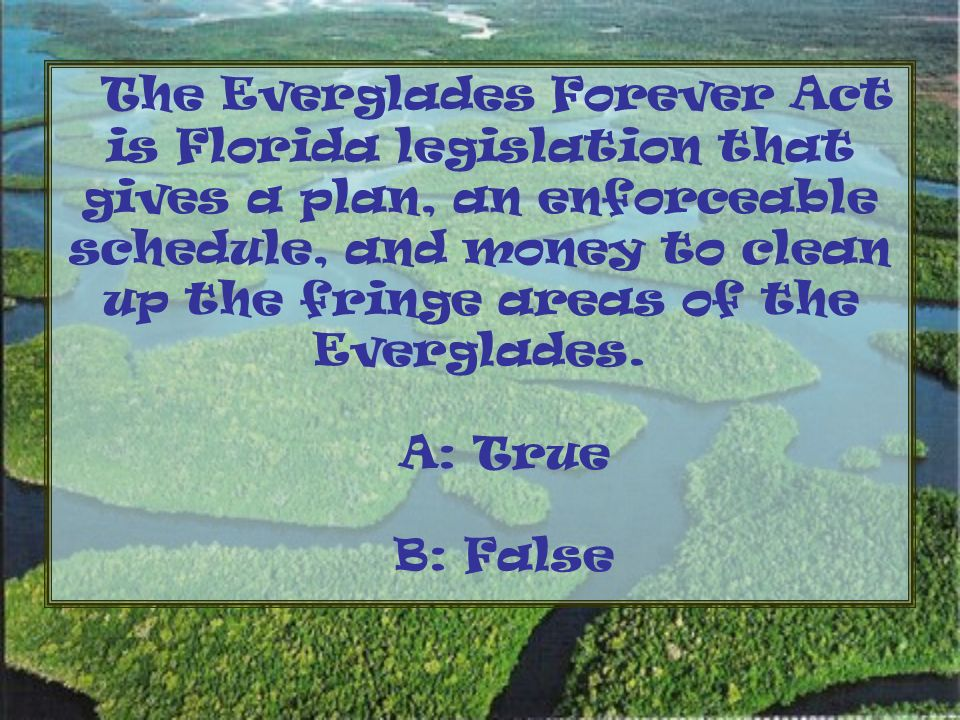 The Everglades Forever Act is Florida legislation that gives a plan, an enforceable schedule, and money to clean up the fringe areas of the Everglades.