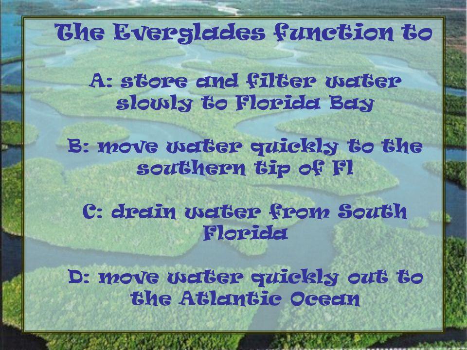 South Florida has two distinct seasons, the hot, humid and wet season, and the cool, dry season.