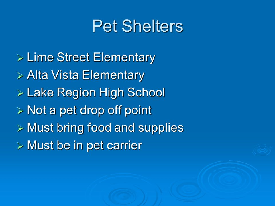 Pet Shelters Lime Street Elementary Lime Street Elementary Alta Vista Elementary Alta Vista Elementary Lake Region High School Lake Region High School Not a pet drop off point Not a pet drop off point Must bring food and supplies Must bring food and supplies Must be in pet carrier Must be in pet carrier