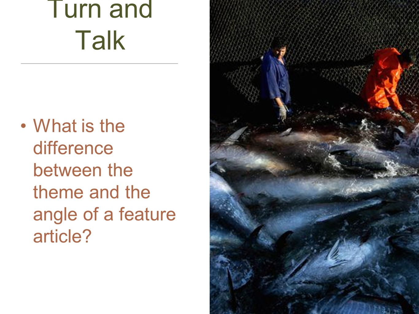 Turn and Talk What is the difference between the theme and the angle of a feature article?