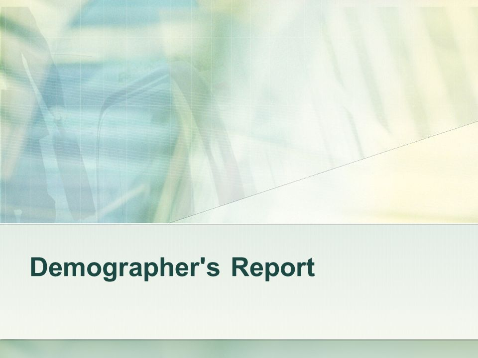 Demographer s Report