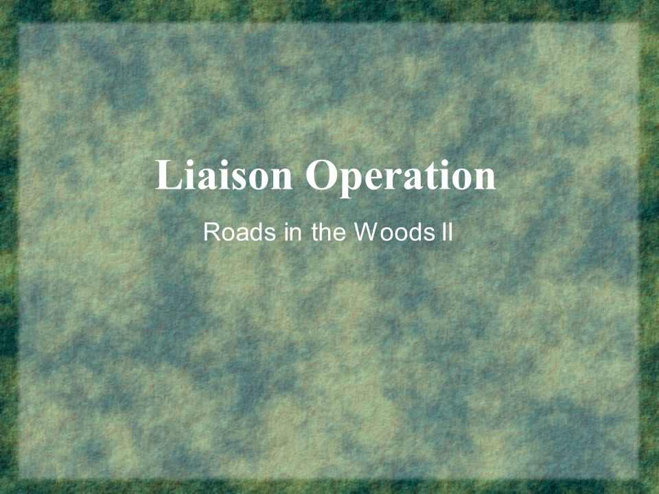 Liaison Operation Roads in the Woods II