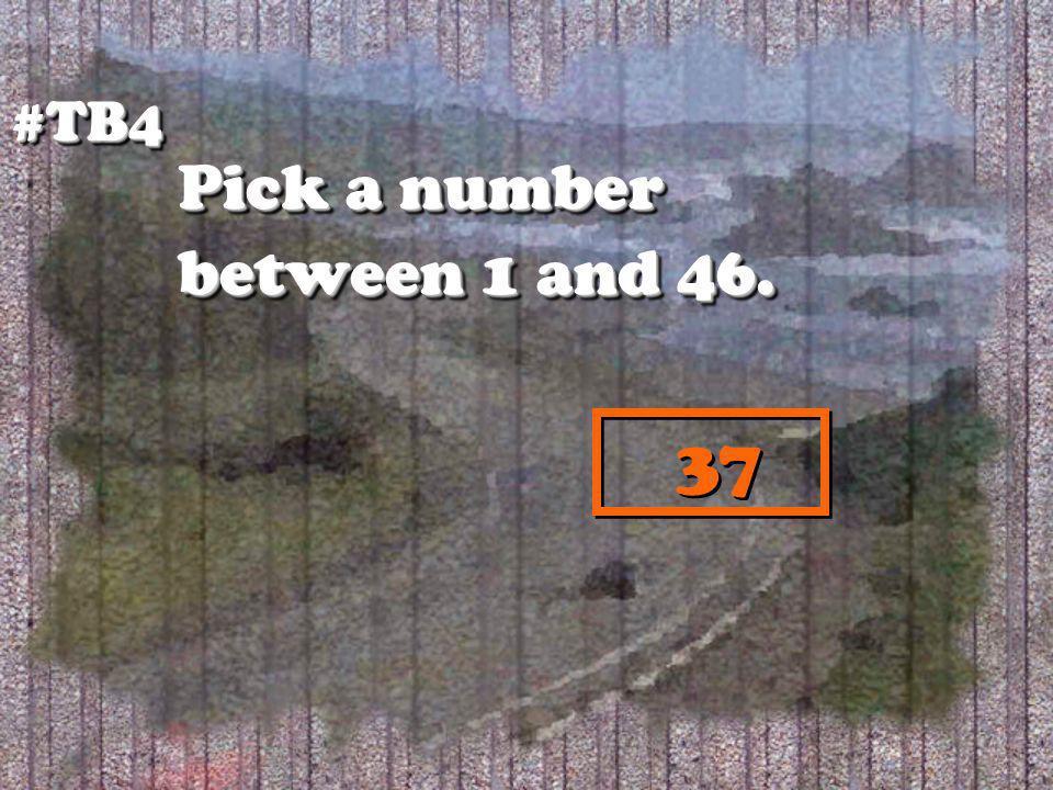 #TB4#TB4 37