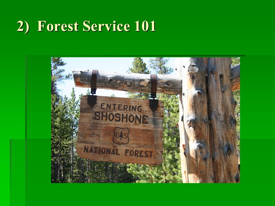 2) Forest Service 101