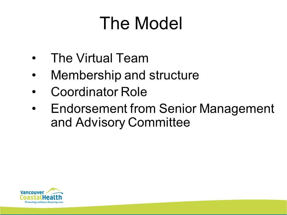 The Model The Virtual Team Membership and structure Coordinator Role Endorsement from Senior Management and Advisory Committee