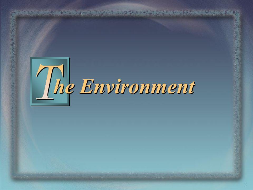 3 he Environment