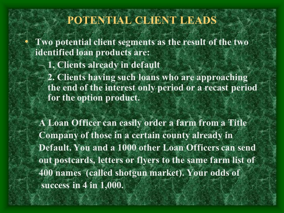 POTENTIAL CLIENT LEADS Two potential client segments as the result of the two identified loan products are: –1.