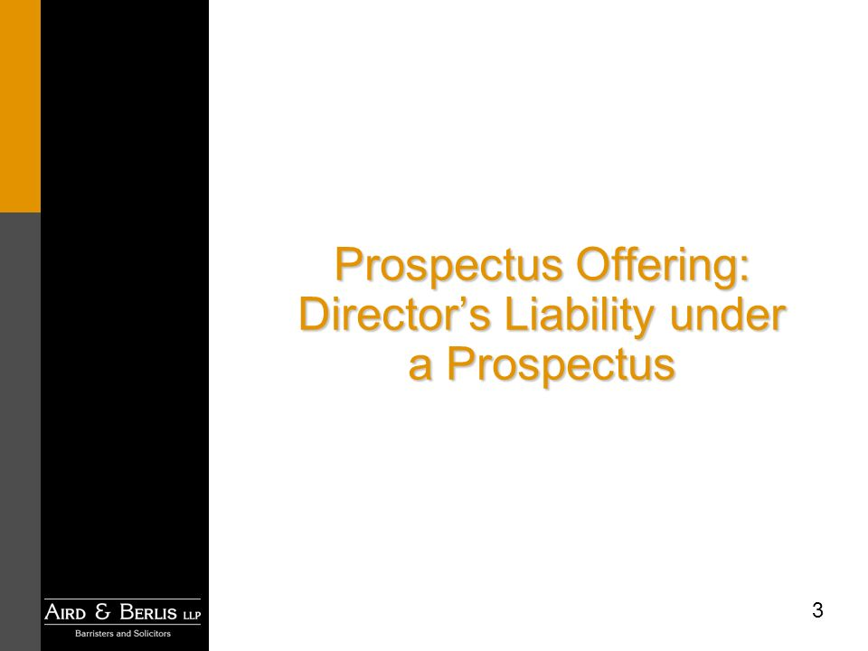 3 Prospectus Offering: Directors Liability under a Prospectus