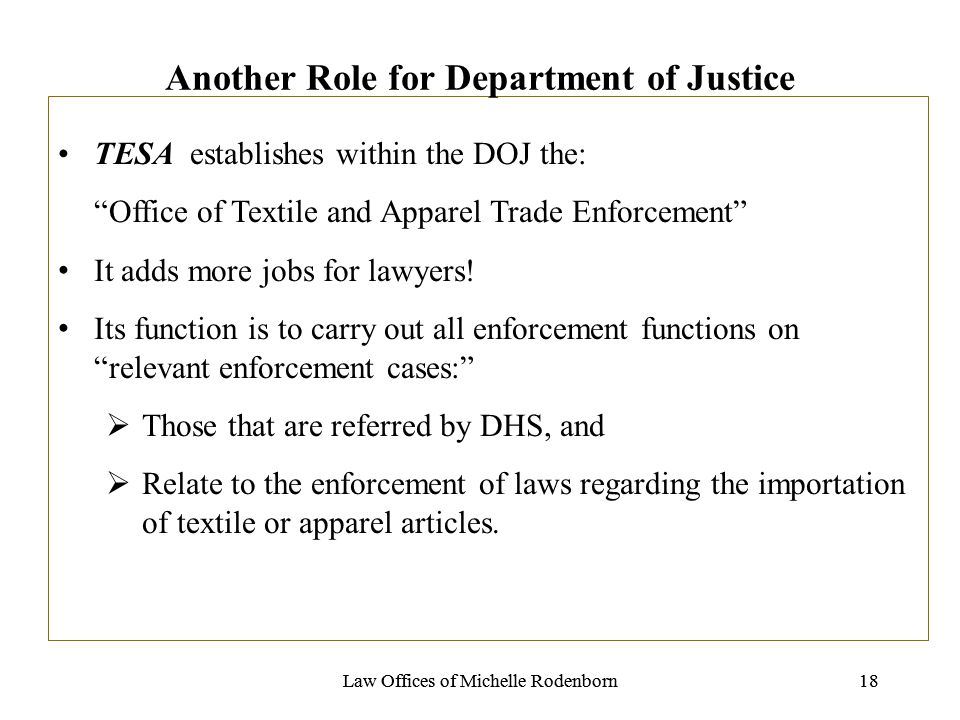Law Offices of Michelle Rodenborn18Law Offices of Michelle Rodenborn18 Another Role for Department of Justice TESA establishes within the DOJ the: Off