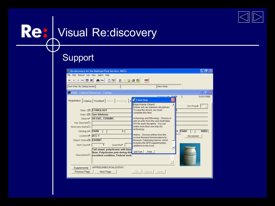 Visual Re:discovery Support