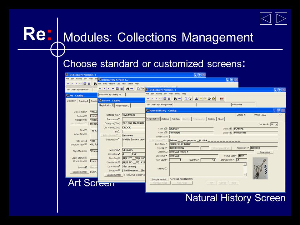 Art Screen Choose standard or customized screens : History Screen Natural History Screen Re : Modules: Collections Management
