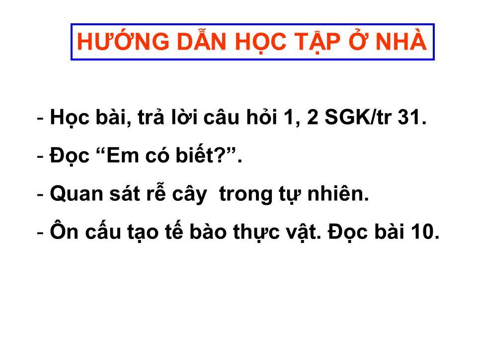 HƯNG DN HC TP NHÀ - Hc bài, tr li câu hi 1, 2 SGK/tr 31.