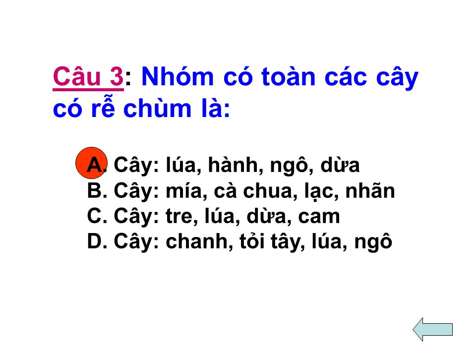 Câu 3: Nhóm có toàn các cây có r chùm là: A. Cây: lúa, hành, ngô, da B.