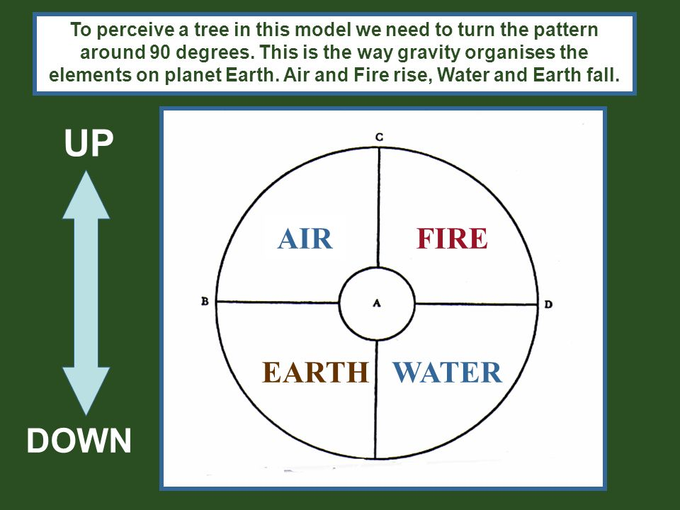 The roots draw up the water (Water) and minerals (Earth) in a process called osmosis.