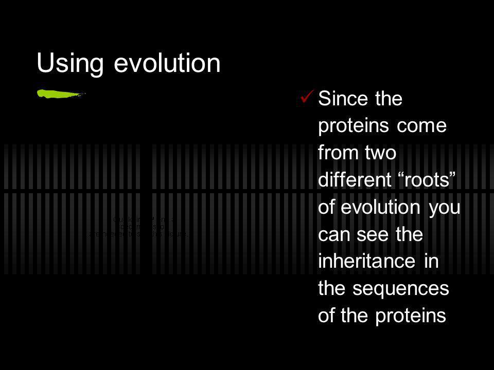 Using evolution Since the proteins come from two different roots of evolution you can see the inheritance in the sequences of the proteins