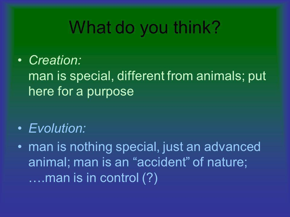 What do you think? Creation: man is special, different from animals; put here for a purpose Evolution: man is nothing special, just an advanced animal