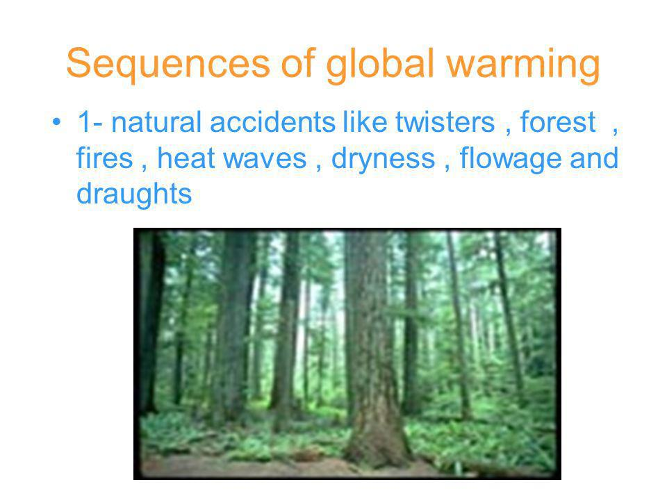 Sequences of global warming 1- natural accidents like twisters, forest, fires, heat waves, dryness, flowage and draughts