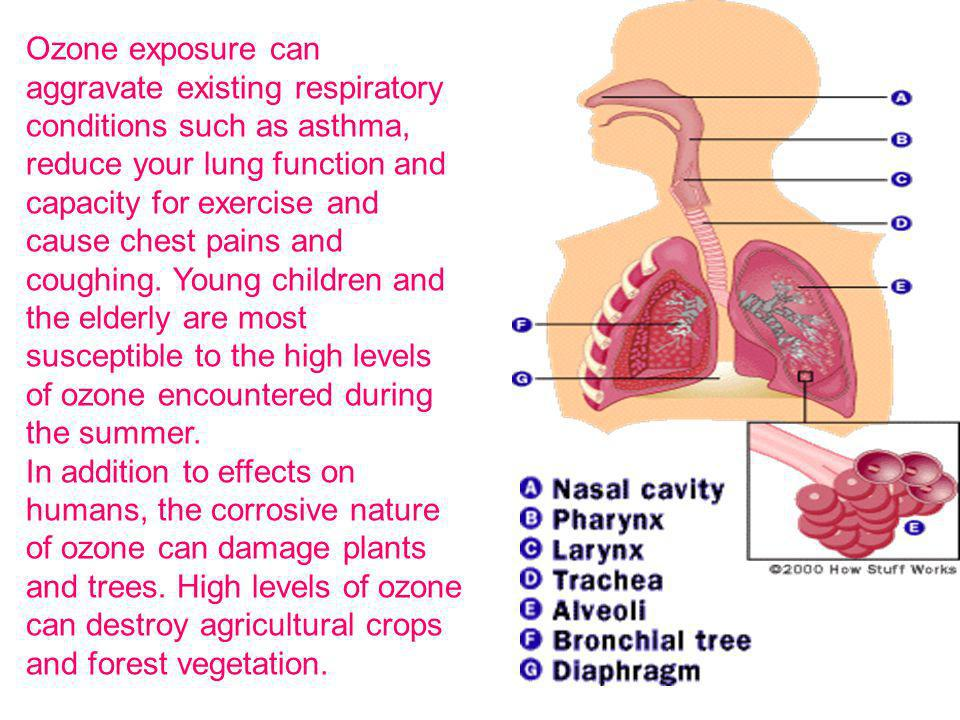 Ozone exposure can aggravate existing respiratory conditions such as asthma, reduce your lung function and capacity for exercise and cause chest pains