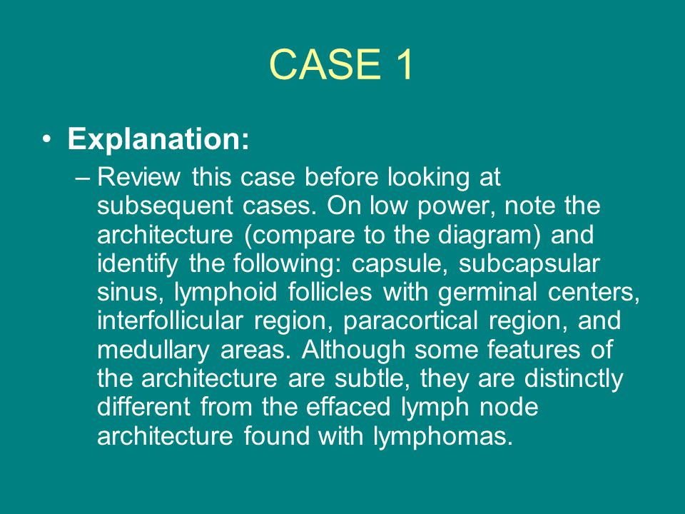 CASE 1 Explanation: –Review this case before looking at subsequent cases. On low power, note the architecture (compare to the diagram) and identify th