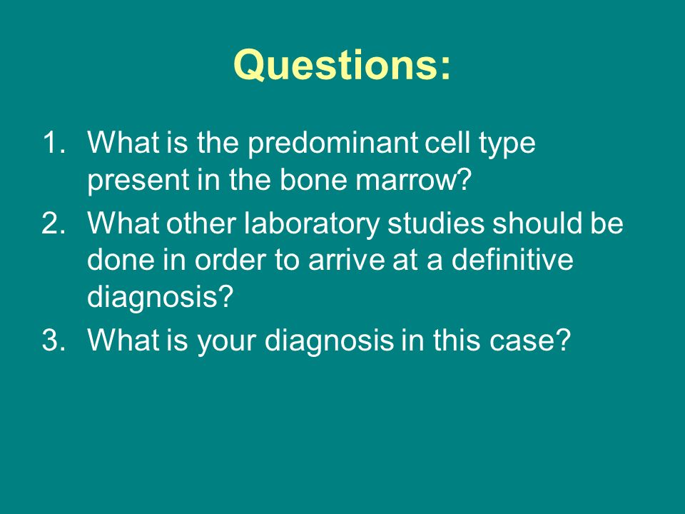Questions: 1.What is the predominant cell type present in the bone marrow? 2.What other laboratory studies should be done in order to arrive at a defi