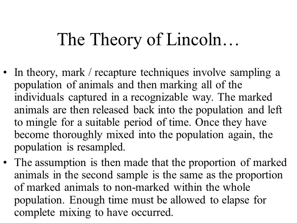 The Theory of Lincoln… In theory, mark / recapture techniques involve sampling a population of animals and then marking all of the individuals capture
