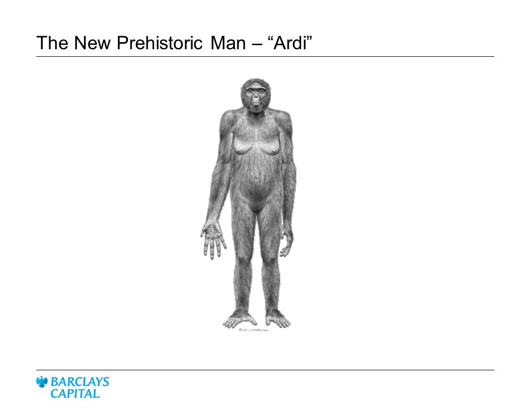 The New Prehistoric Man – Ardi