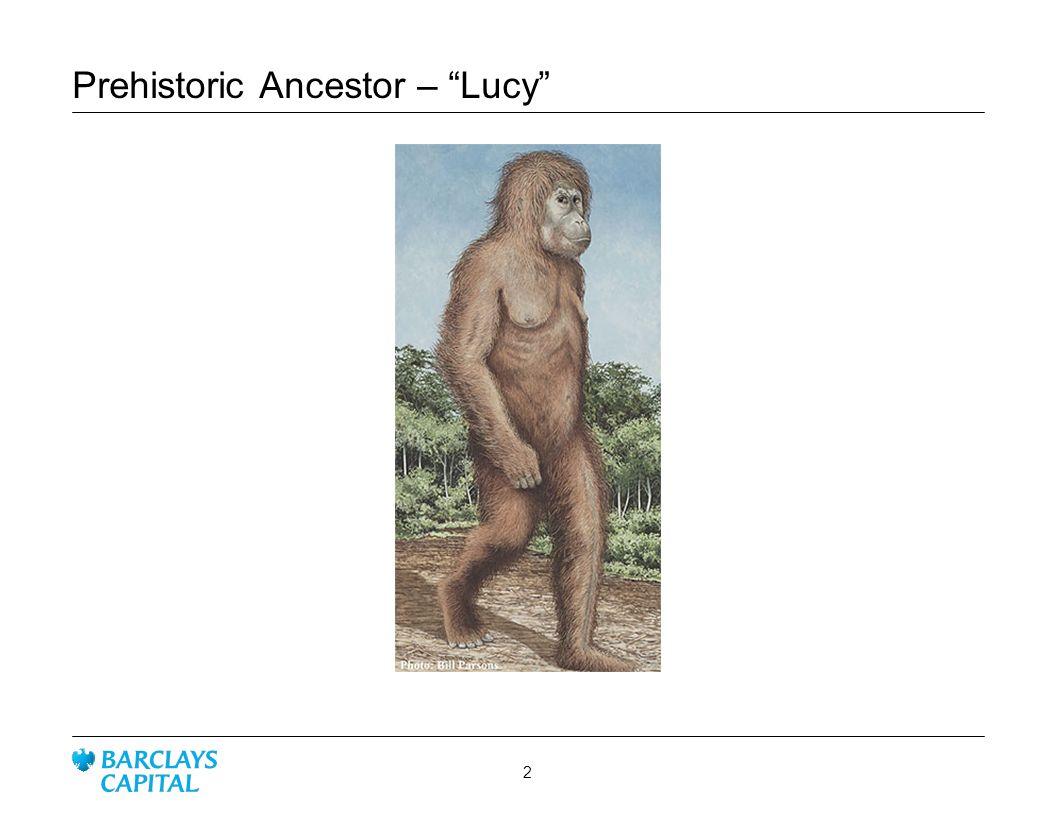 Prehistoric Ancestor – Lucy 2