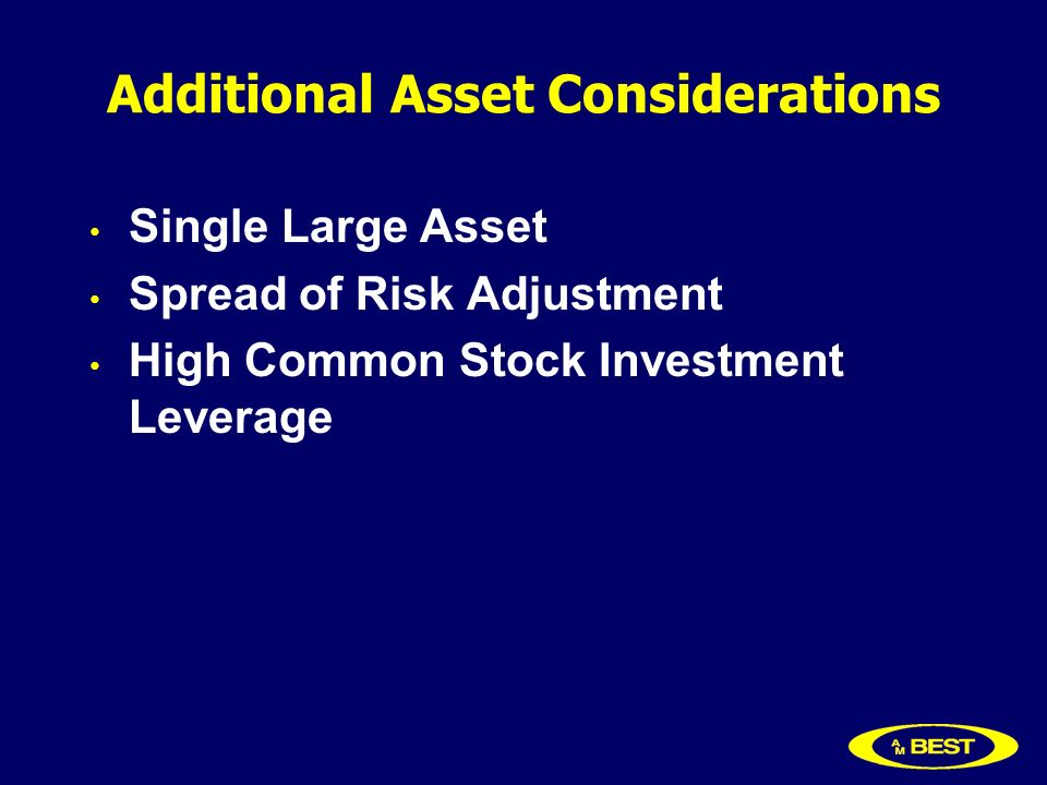 Additional Asset Considerations Single Large Asset Spread of Risk Adjustment High Common Stock Investment Leverage