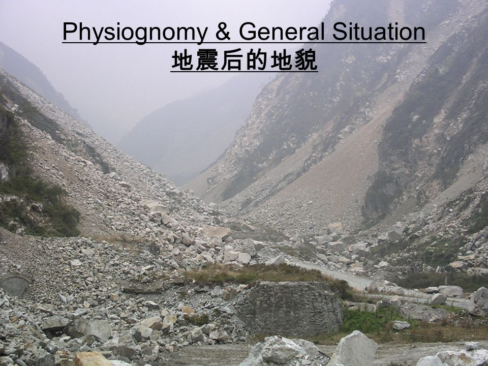 Physiognomy & General Situation