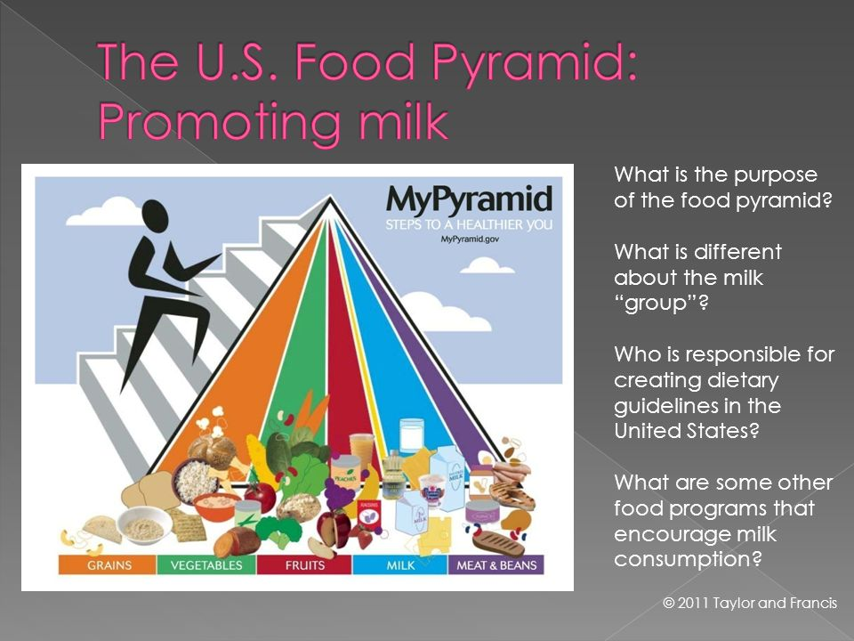 What is the purpose of the food pyramid? What is different about the milk group? Who is responsible for creating dietary guidelines in the United Stat