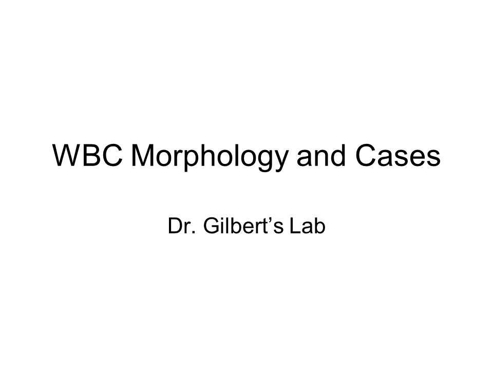 WBC Morphology and Cases Dr. Gilberts Lab