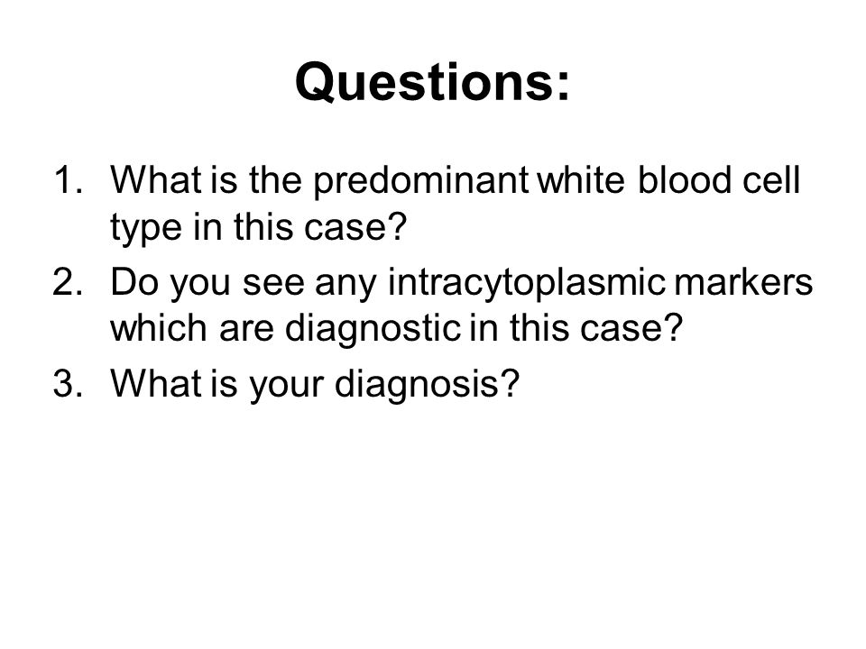 Questions: 1.What is the predominant white blood cell type in this case? 2.Do you see any intracytoplasmic markers which are diagnostic in this case?