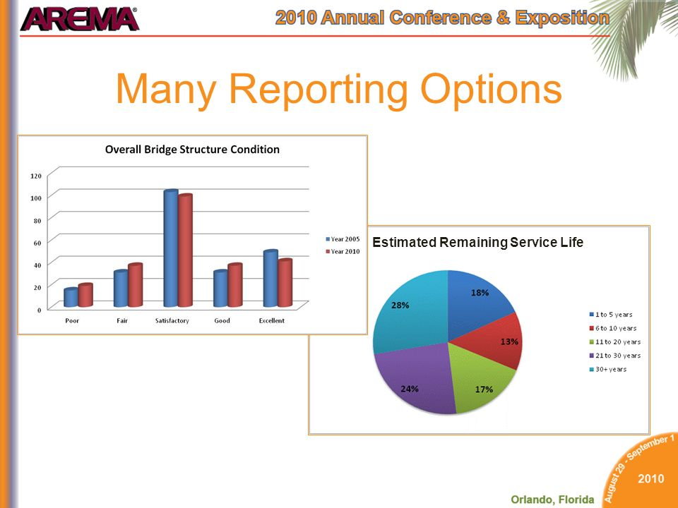 Many Reporting Options Estimated Remaining Service Life