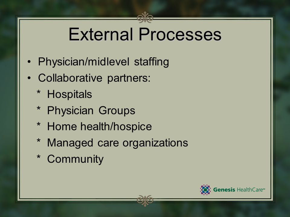 External Processes Physician/midlevel staffing Collaborative partners: * Hospitals * Physician Groups * Home health/hospice * Managed care organizatio