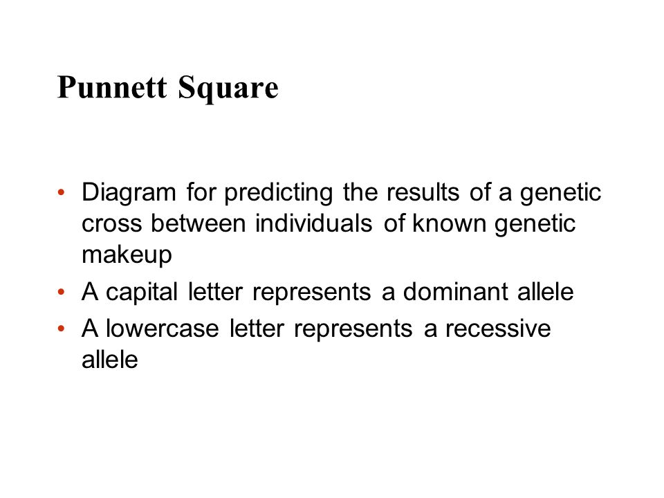 Punnett Square Diagram for predicting the results of a genetic cross between individuals of known genetic makeup A capital letter represents a dominan
