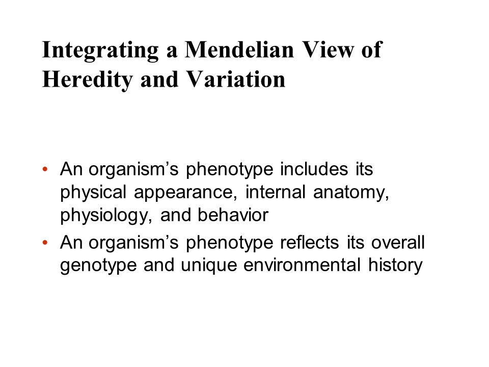 Integrating a Mendelian View of Heredity and Variation An organisms phenotype includes its physical appearance, internal anatomy, physiology, and beha