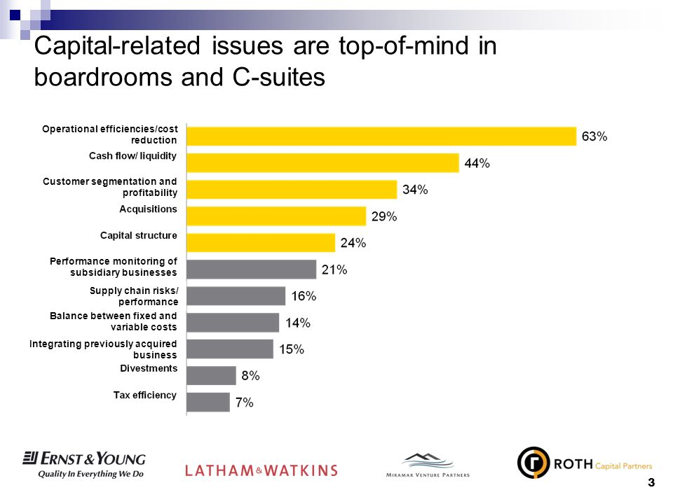 3 Capital-related issues are top-of-mind in boardrooms and C-suites Operational efficiencies/cost reduction Customer segmentation and profitability Pe