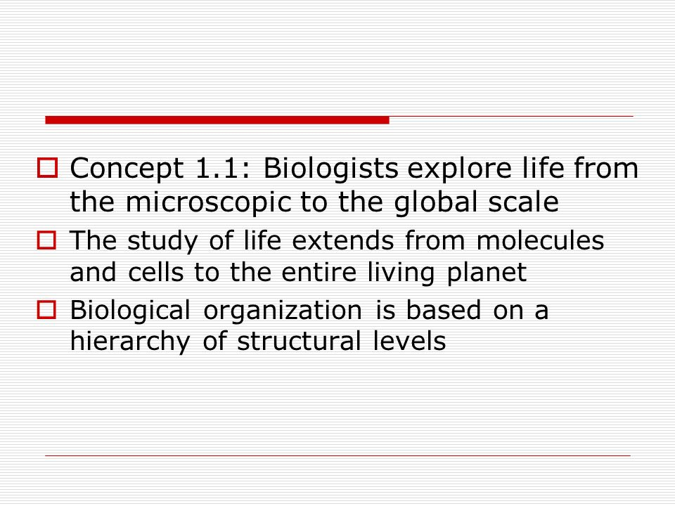 A Hierarchy of Biological Organization 1.Biosphere: all environments on Earth 2.Ecosystem: all living and nonliving things in a particular area 3.Community: all organisms in an ecosystem 4.Population: all individuals of a species in a particular area 5.Organism: an individual living thing